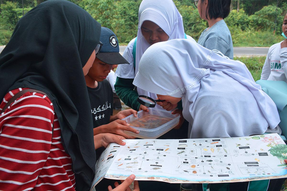 Bio tilik : Mengamati Dan Belajar Biota Air Yang Ada Disekitar Kita